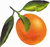 orange station icon